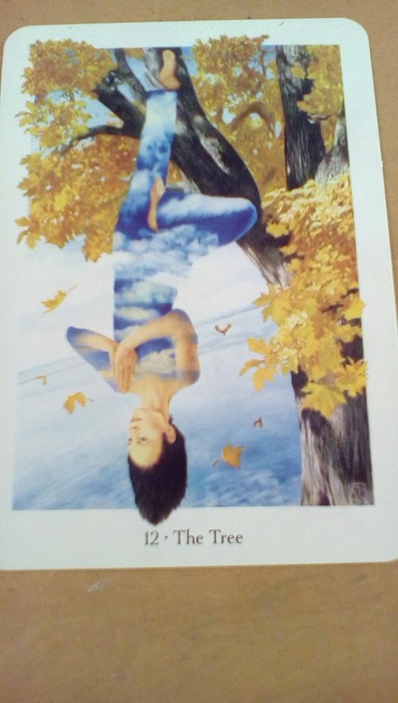 12 Tree